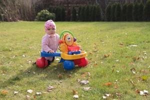 Zum Spielen genutzter Rasen