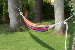Hängematte lässt sich mit der richtigen Befestigung leicht zwischen zwei Bäumen aufhängen.