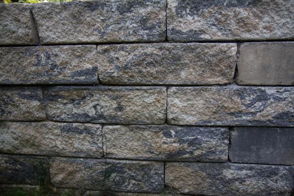 Hecke Zaun Oder Mauer