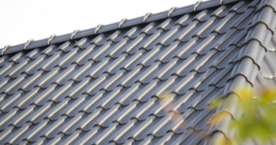 Dachziegel – Beton oder Ton